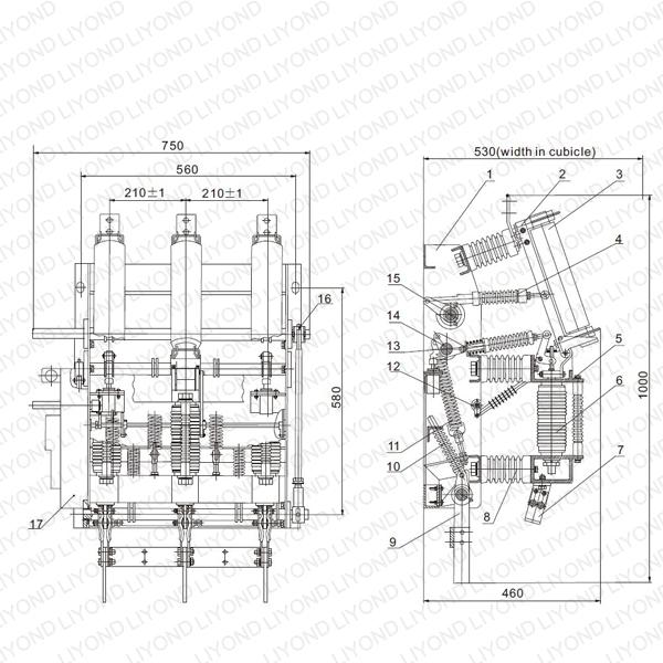 Vacuum Load Break Switch and Fuse Combination Apparatus