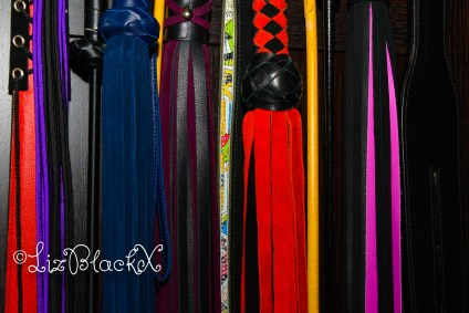 Picture of whips  Copyright Liz BlackX