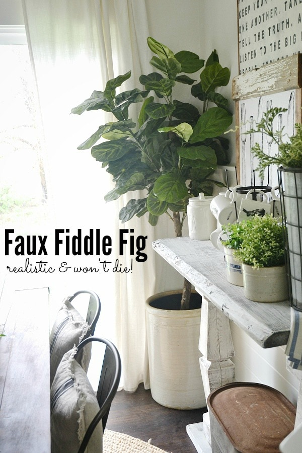 faux fiddle fig great price canu0027t die