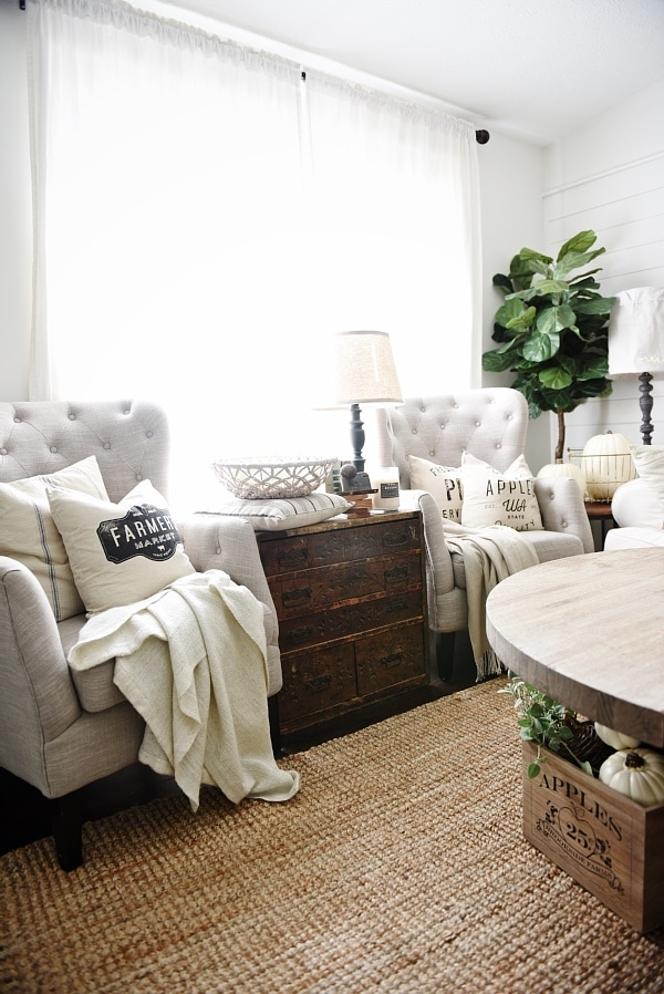 Seating Ideas For A Small Living Room: Neutral Fall Pillows