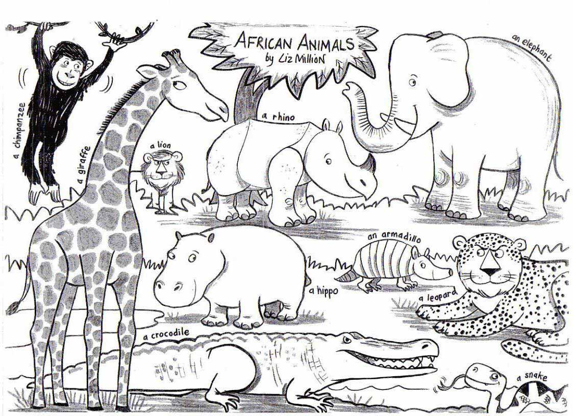 African Animals Liz Million