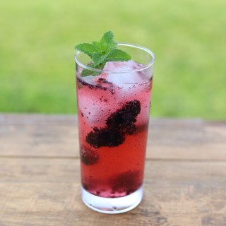 Blackberry Gin Fizz Cocktail