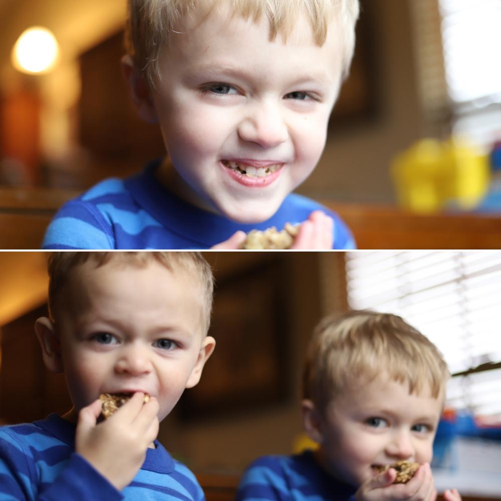 No Bake Energy Bite Recipe | St. Louis Family & Lifestyle Blogger Liz of lizrotz.com