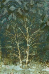 Binding: Digital collage © 2013 Liz Ruest