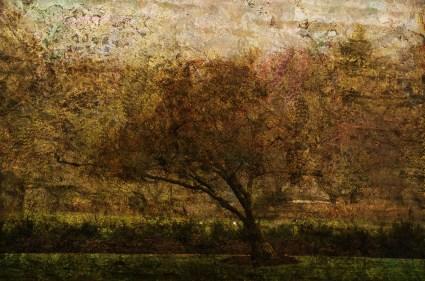 Fusing: Digital collage © 2013 Liz Ruest