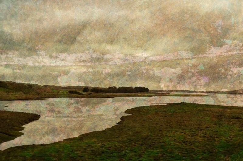 Forvie Reserve: Digital collage, 7 layers © 2017 Liz Ruest