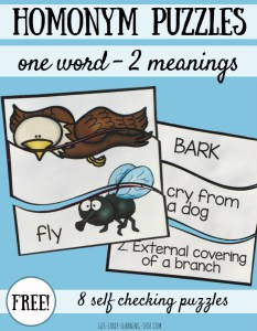 Free Homonym Puzzles: One Word, Two Meanings