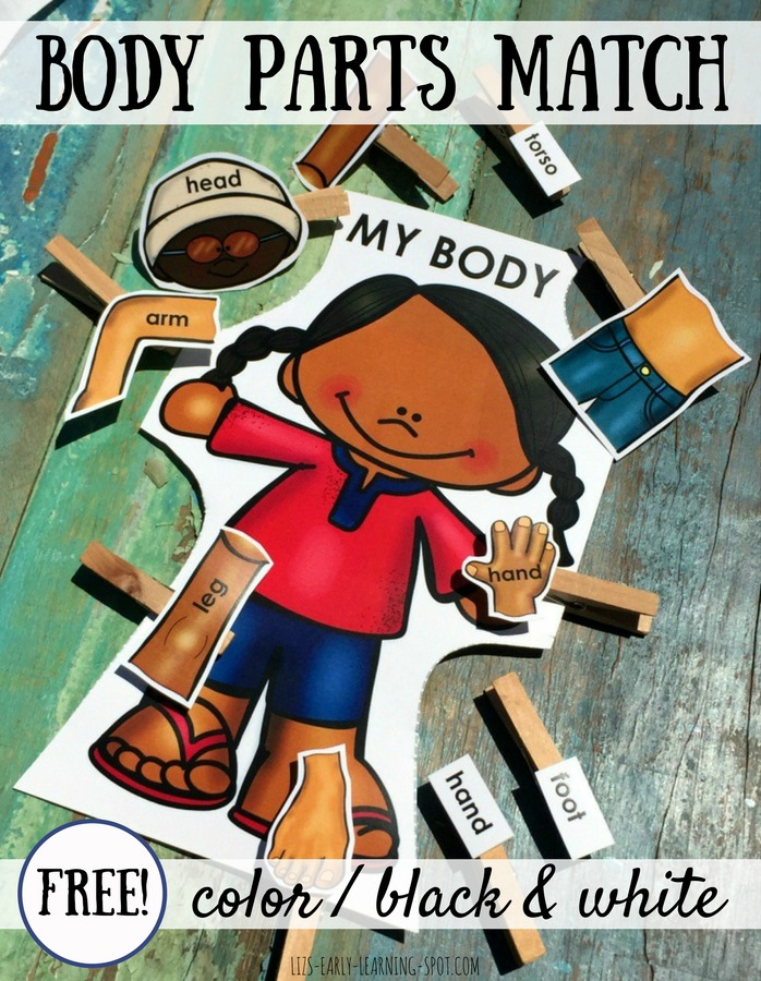 Practice matching body parts with this free activity for boys and girls!
