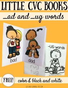 Little CVC Books: _ad and _ug Word Families