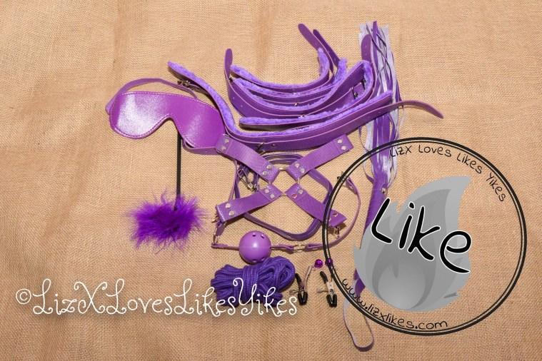 BDSM Set - Purple Copyright Liz BlackX  Overall verdict: Like