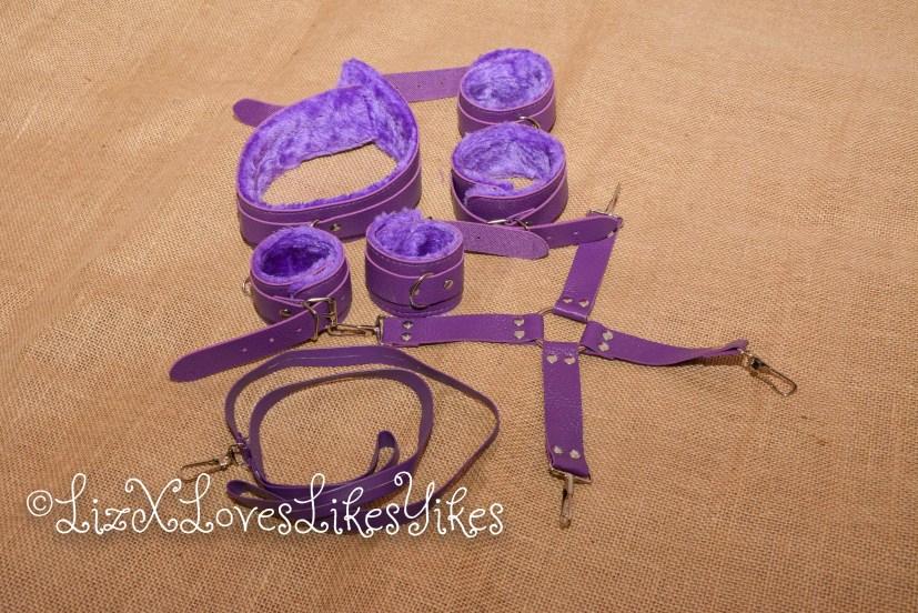 BDSM Set - Purple Copyright Liz BlackX  The bondage gear in one picture