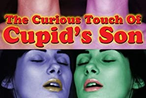The Curious Touch Of Cupid's Son: An Erotic Comedy Between Two Consenting Demigods by Dave Diotalevi – Review