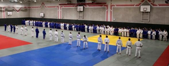 Judo Linz 2019 2