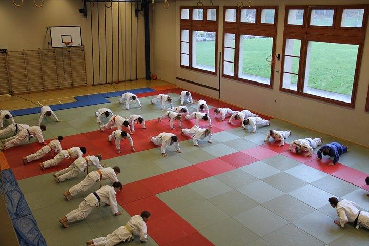 Judolager Elm 1