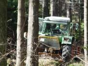Maibaum Reinholden 26.03.2005 - 06
