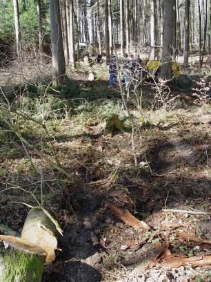 Maibaum Reinholden 26.03.2005 - 10