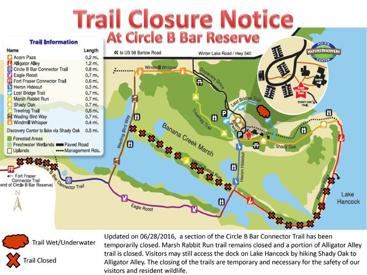 much of circle b s alligator alley closed for three months lkldnow