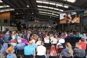 Royal Welsh Show: Day 2 In Pictures