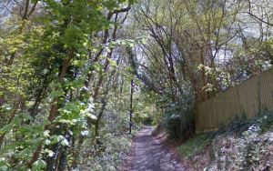 Safety and lack of consultation raise cycle path concerns in Swansea