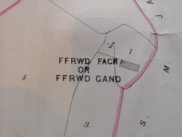 Ffrwd Fach farm 1884 map