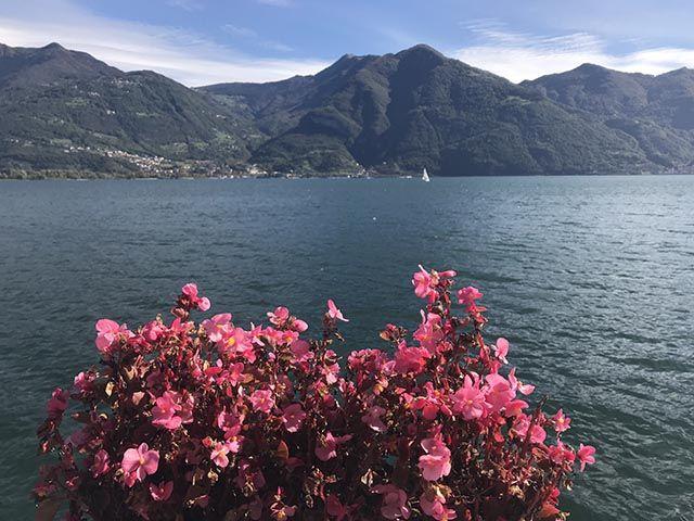 Estaciones del año en Italia ¡primavera!