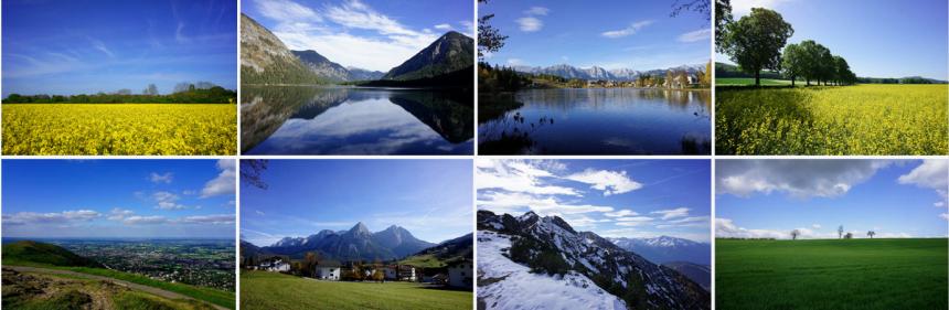 Página de resultados del banco de imágenes y fotografías Flickr