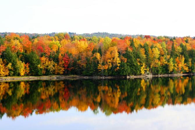 Fall Bursts to Life