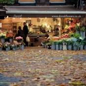 Islington Flower Shop