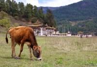 Bhutan: Trekking in the Bumthang Valley