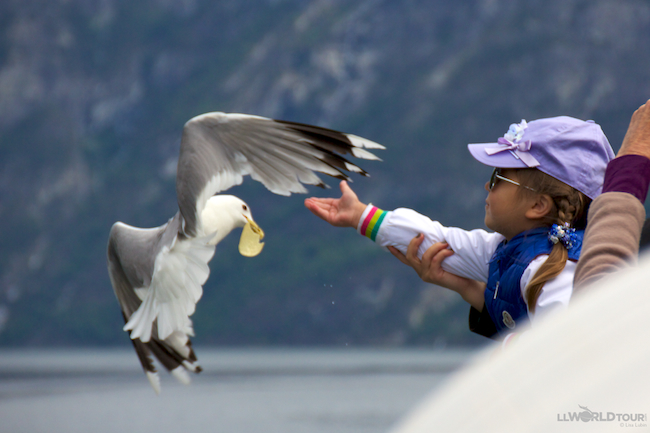 Don't Feed the Birds!