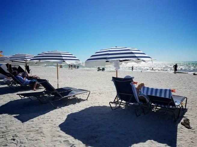 Sirata beach resort beach