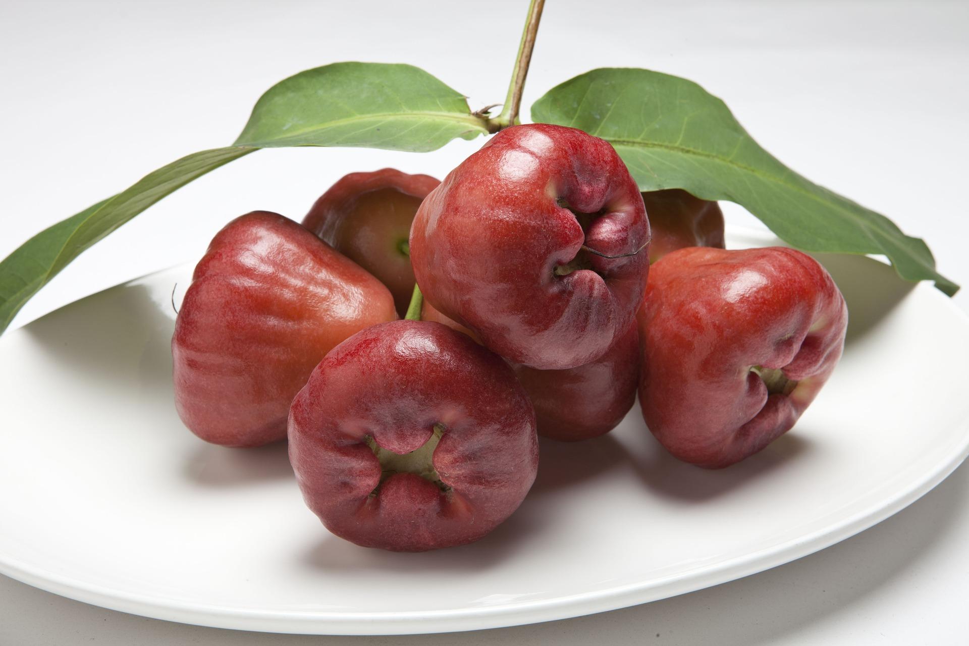 You are currently viewing Fruits et légumes de saison: Avril et Mai