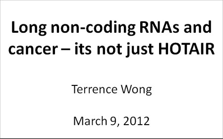 Presentation – Long non-coding RNAs and cancer