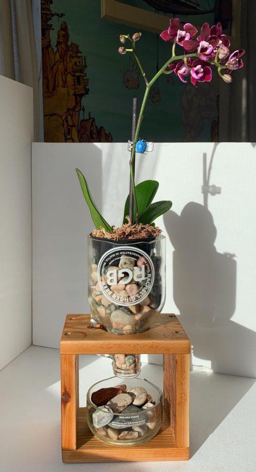 Handcrafted Planter & Orchid | www.loadedbrushpdx.com