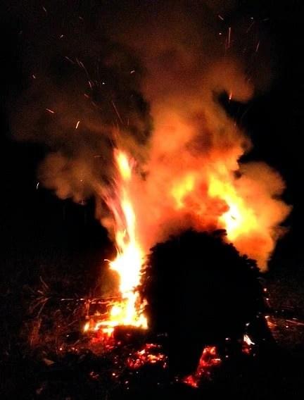 christmas tree fire @loavesanddishes.net