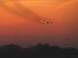 Zaprašivanje komaraca beograd - Leva obala Dunava u Beogradu - 18.05.2013