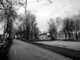 Osnovna škola Stevan Sremac Borča