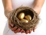 Zlatna koka ili zlatno jaje zemljište mosta Borča-Zemun