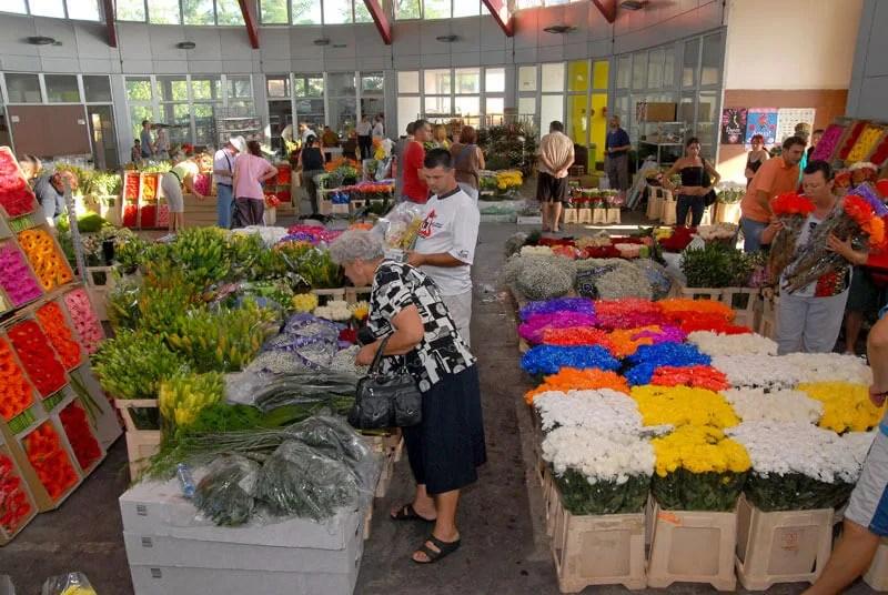 Sajam cveća i cvetnih aranžmana u Krnjači