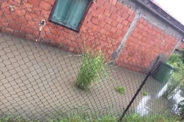poplava borca 5 2019 06 24