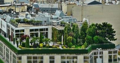 Aménagement de la terrasse : les astuces à retenir