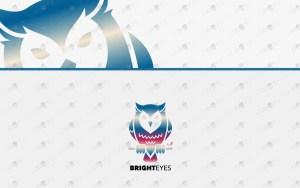 premium owl logo for sale premade