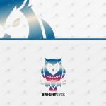 Amazing Creative & Modern Owl Logo For Sale