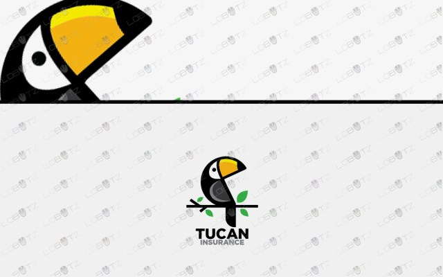 Toucan Logo For Sale Premade Toucan Logo