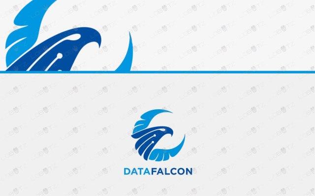 Falcon Logo For Sale | Creative & Simple Data Falcon Logo