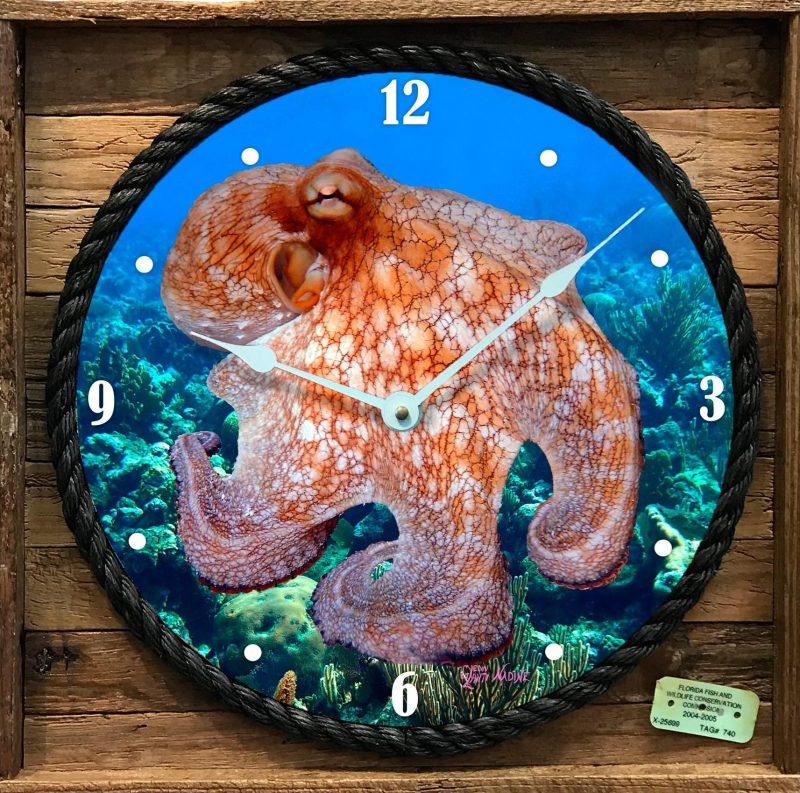 """OCTOPUS 2"" FRAMED CLOCK"
