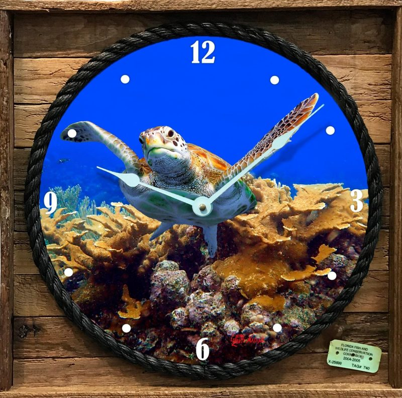 """""""TURTLE AND CORAL"""" FRAMED CLOCK"""