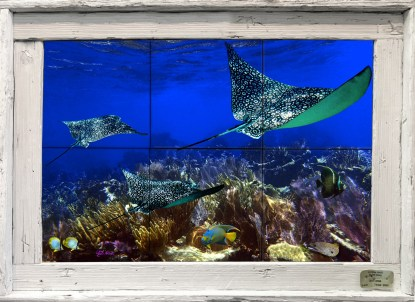 Gliding Over the Corals Tile Mural