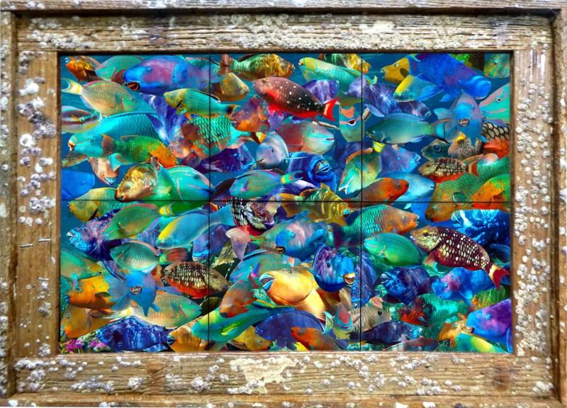 Parrothead Convention Tile Mural