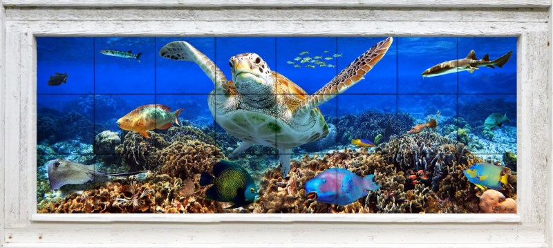 Coral Reef with turtle and tropical fish in a wood frame